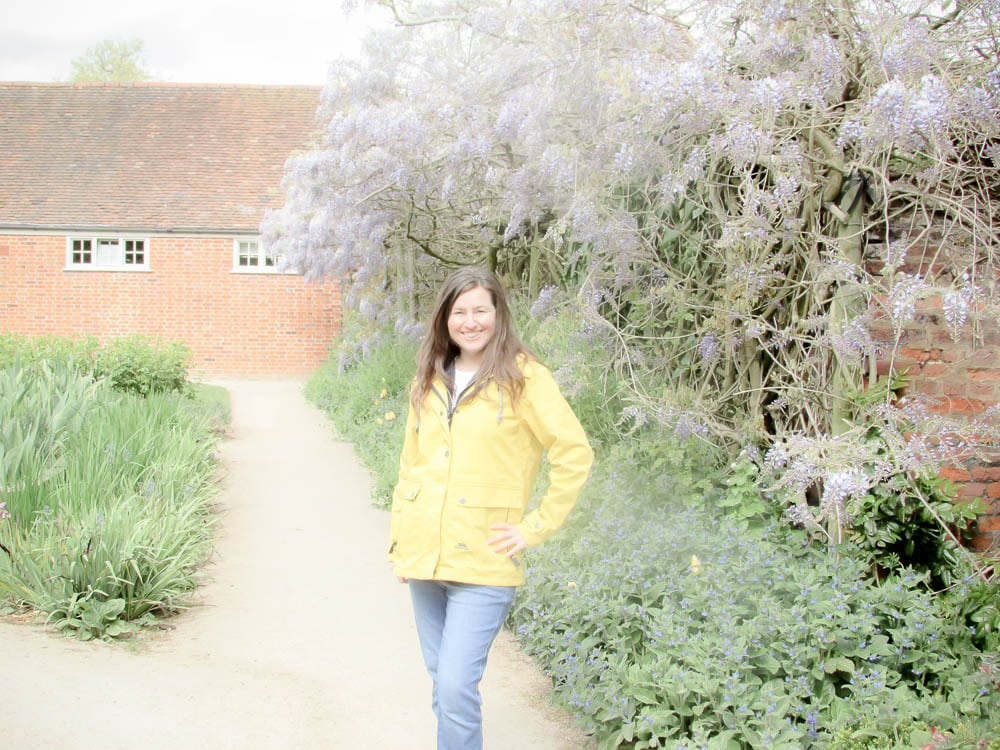 Forty Hall Wisteria